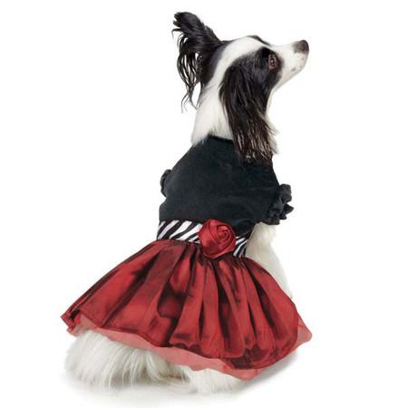 Jolie Party Dress