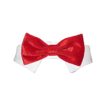 Valentino Bow Tie Collar