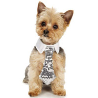 Shimmer Nights Sequin Necktie