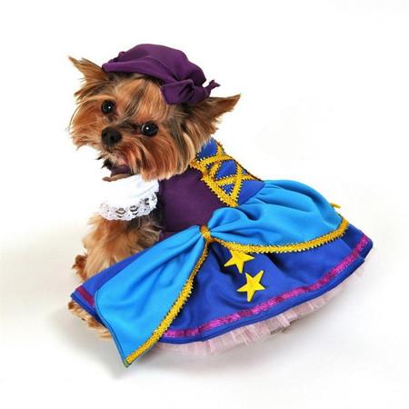 Gypsy Princess Dog Costume
