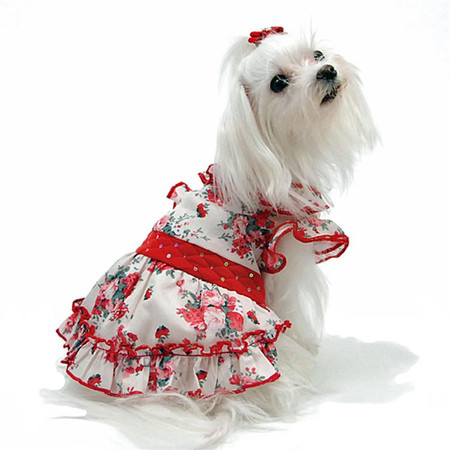 Oscar Newman Red Carpet Ready Floral Dog Dress