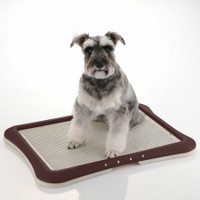 Richelle Training Tray