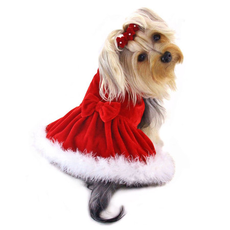 Elegant Christmas Dress With Fur Trim