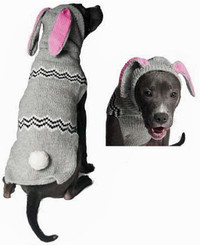 Bunny Dog Hoodie