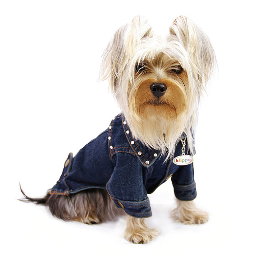 Bling Denim Dog Jacket