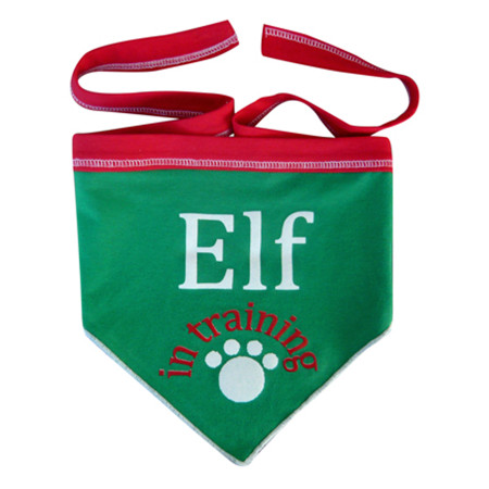 Elf in Training Scarf