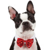 Canine Royale Red Sequin Bowtie