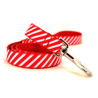 Peppermint Stripe Dog Lead