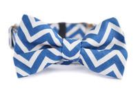 Cobalt Chevron Bow Tie