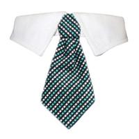 Benjamin Shirt Tie Collar