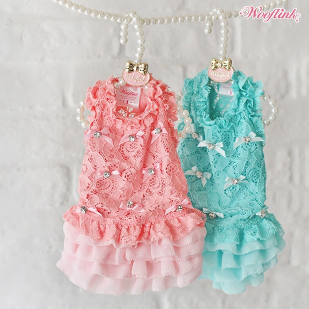 Wooflink Sugar Sugar Dress