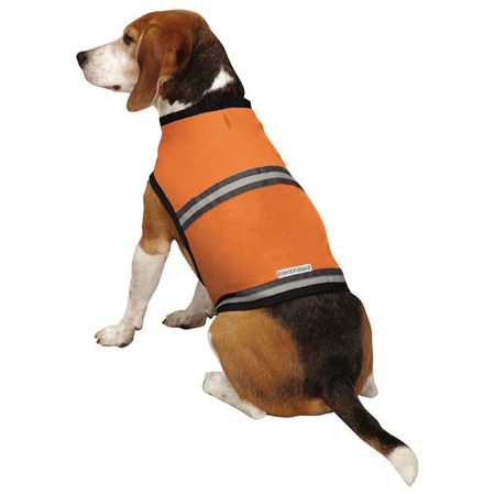 Insect Shield Protective Safety Dog Vest