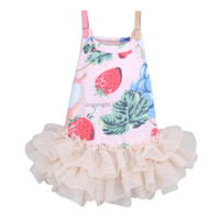 Louisdog Wild Berry Dress