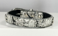 Crystal Bone Charm Collar & Matching Lead