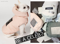 Louisdog Celebrity Padding Hooded Vest Jacket