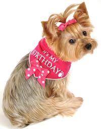 It's My Birthday Pink Scarf