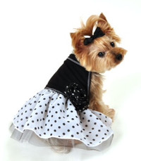 Black & White Organza Dots Dress