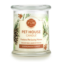 Evergreen Forest Odor Eliminating Soy Candle