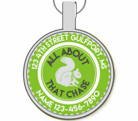 All About That Chase Silver Pet ID Tag