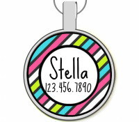 Rainbow Stripes Silver Pet ID Tags
