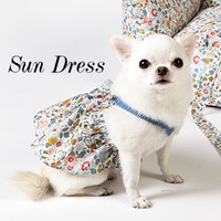 Louisdog Sun Dress