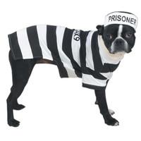 Prison Pooch Costume