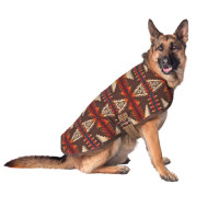 Brown Southwest Blanket Coat