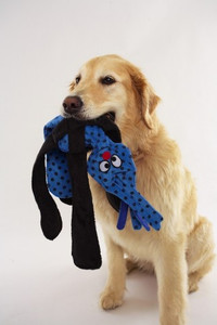Silly Pulls Dog Toys