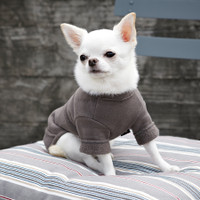 Louisdog Cotton Warmer Tee