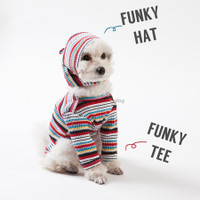 Louisdog Funky Stripes Hat
