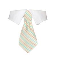 Parker Tie Shirt Collar