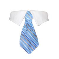 Kyle Tie Shirt Collar