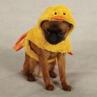 Quackers Duck Dog Costume (LAST ONE!)