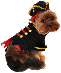 Buccaneer Pirate Dog Costume (LAST ONE!)