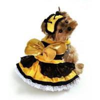 Honey Bee Dog Costume