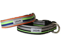 Track Stripe Collar & Lead