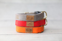 Sporting Group Collar & Lead