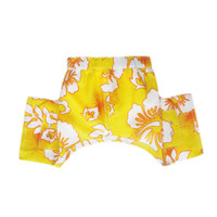 Belize Dog Swim Trunk
