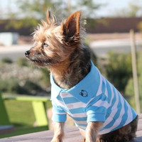 Striped Dog Polo
