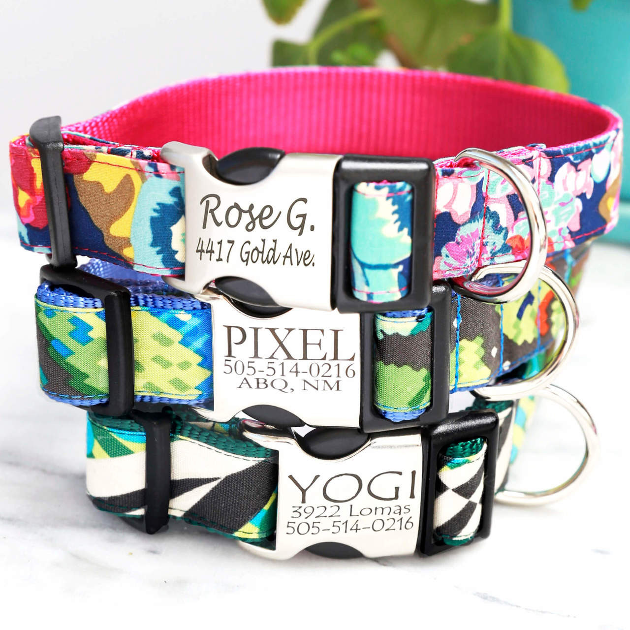 engraved buckle classic cotton personalized dog collars