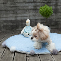 Louisdog Lucky Blue Rug
