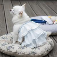 Louisdog Girl's Blouse