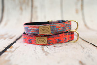 Neon Tribal Collar & Lead