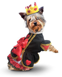 Queen of Heats Dog Costume
