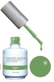 PERFECT MATCH - Gel Polish + Lacquer, LUSH LIFE PMS178 - DW178