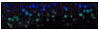 DecoSparkle Black 15in x 1 foot