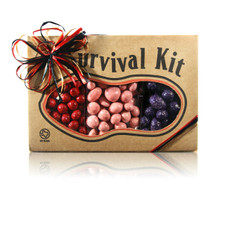 austiNuts Survival Kit - Chocomania is Great for chocolate lovers!   Contains: Chocolate Blackberries, Dark Chocolates Raisins, Pastel Chocolate Cherries & Strawberries