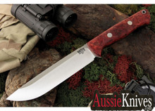 Bark River Bravo 1.5. Red Spalted Maple Burl - A2 - Field Version