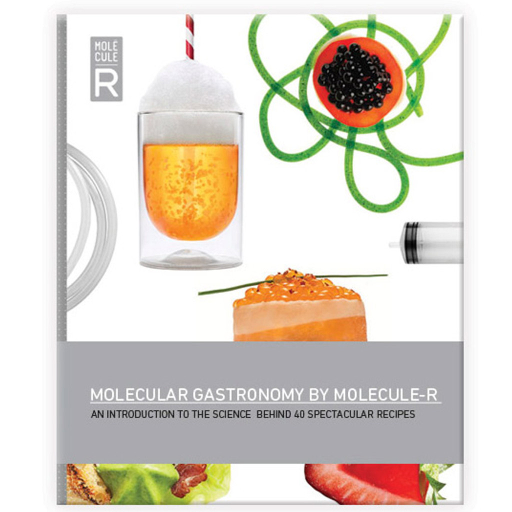 research critique of molecular gastronomy Molecular gastronomy with a modern retelling performing food research using his previous knowledge of the name molecular gastronomy was chosen because in.