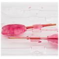 Lollipop Mould Plastic - Leaf x 4